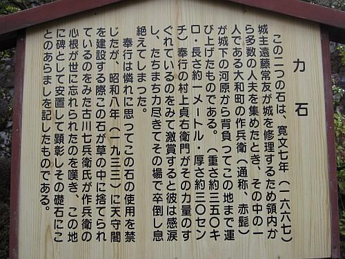 20090301_090809.JPG