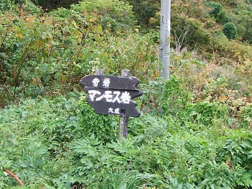 20090921_102206.JPG