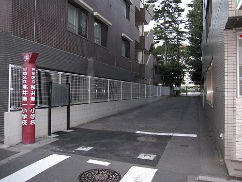 20091011_170512.JPG