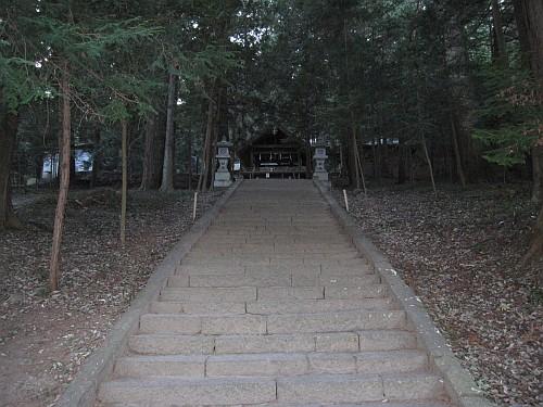 20100110_153105.JPG
