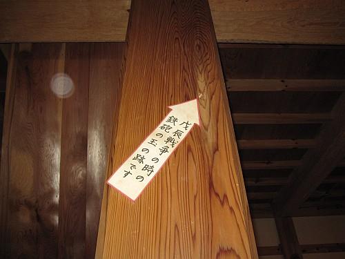 20100501_105229.JPG